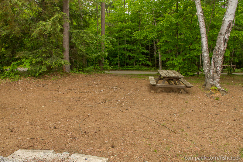 Campsite Photo of Site 303 at Fish Creek Pond Campground, New York - Looking Back Towards Road