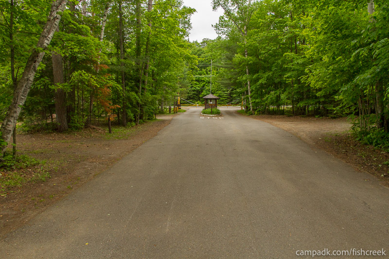 Campsite Photo of Site 303 at Fish Creek Pond Campground, New York - View Down Road from Campsite