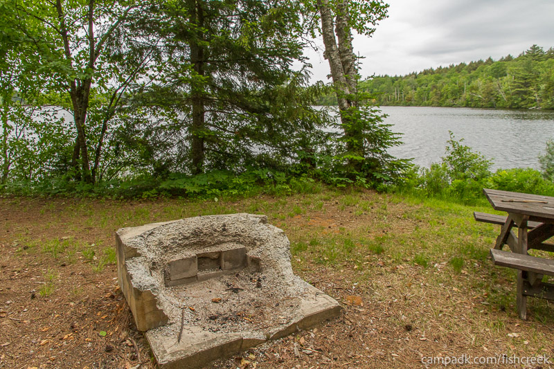 Campsite Photo of Site 304 at Fish Creek Pond Campground, New York - Fireplace View