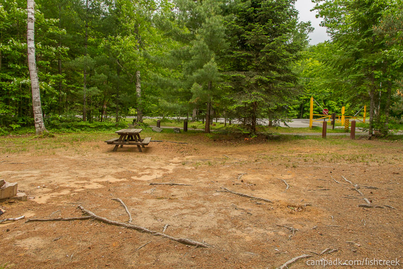 Campsite Photo of Site 305 at Fish Creek Pond Campground, New York - Cross Site View