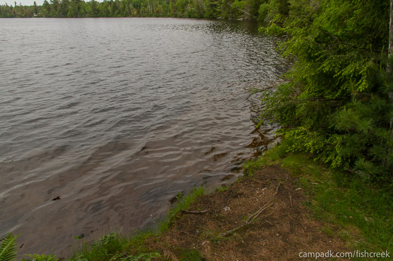 Campsite Photo of Site 305 at Fish Creek Pond Campground, New York - Shoreline