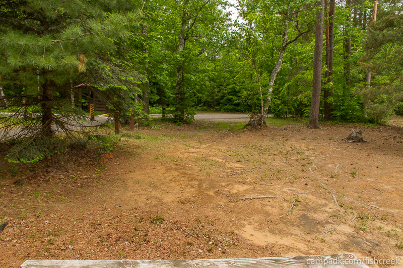Campsite Photo of Site 305 at Fish Creek Pond Campground, New York - Looking Back Towards Road