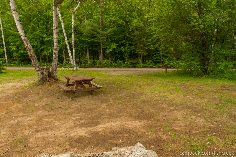 Campsite Photo of Site 180 at Fish Creek Pond Campground, New York - Looking Back Towards Road