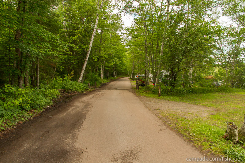 Campsite Photo of Site 180 at Fish Creek Pond Campground, New York - View Down Road from Campsite