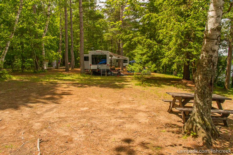 Campsite Photo of Site 209 at Fish Creek Pond Campground, New York - Cross Site View