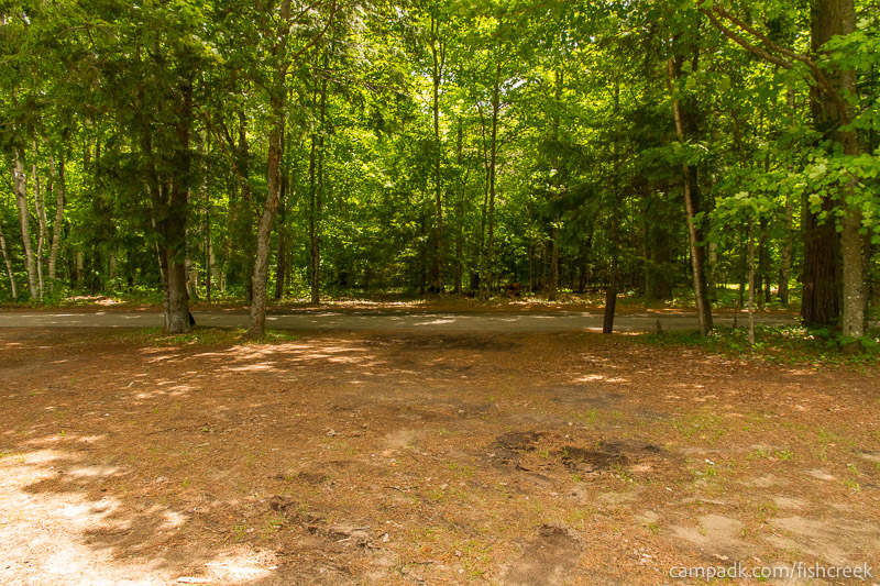 Campsite Photo of Site 209 at Fish Creek Pond Campground, New York - Looking Back Towards Road