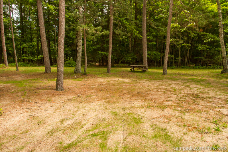 Campsite Photo of Site B3 at Fish Creek Pond Campground, New York - Looking at Site from Road