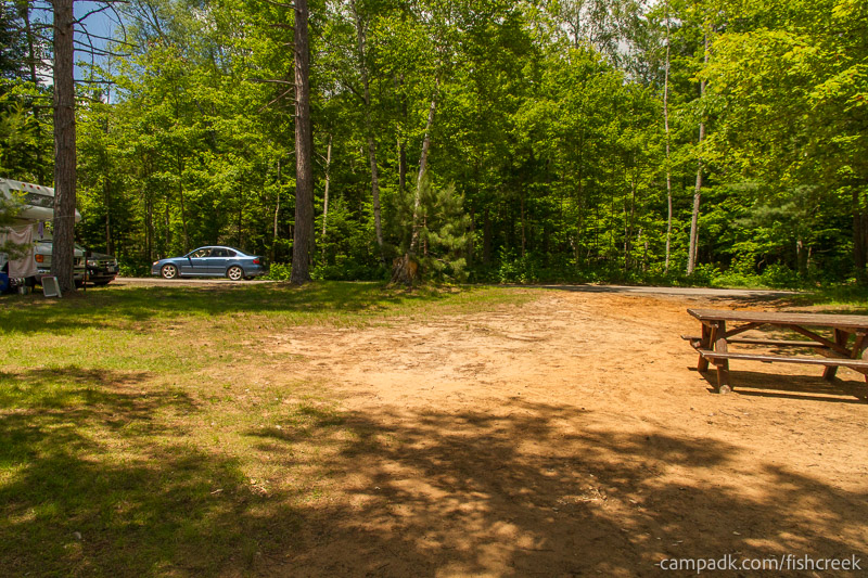 Campsite Photo of Site 39 at Fish Creek Pond Campground, New York - Looking Back Towards Road
