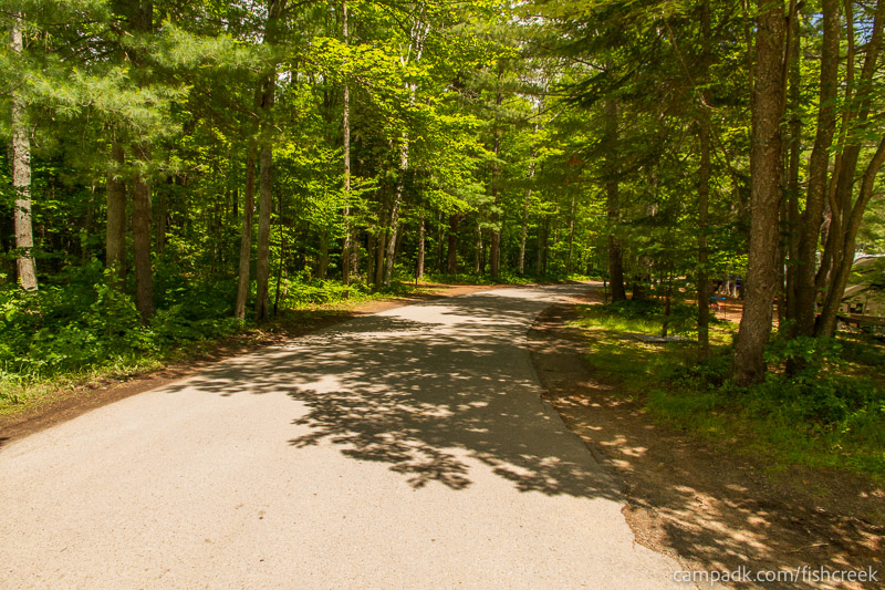 Campsite Photo of Site 39 at Fish Creek Pond Campground, New York - View Down Road from Campsite