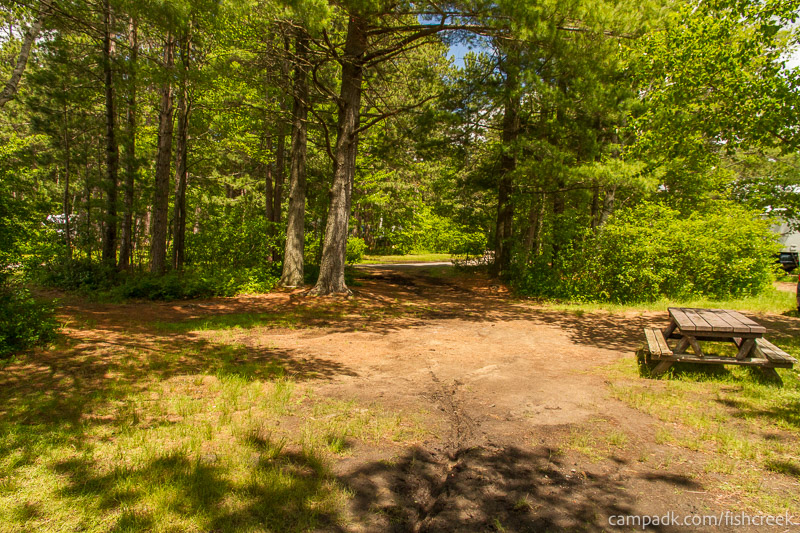 Campsite Photo of Site 68 at Fish Creek Pond Campground, New York - Looking Back Towards Road