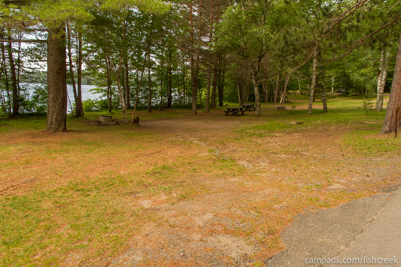 Campsite Photo of Site 98 at Fish Creek Pond Campground, New York - Looking at Site from Road