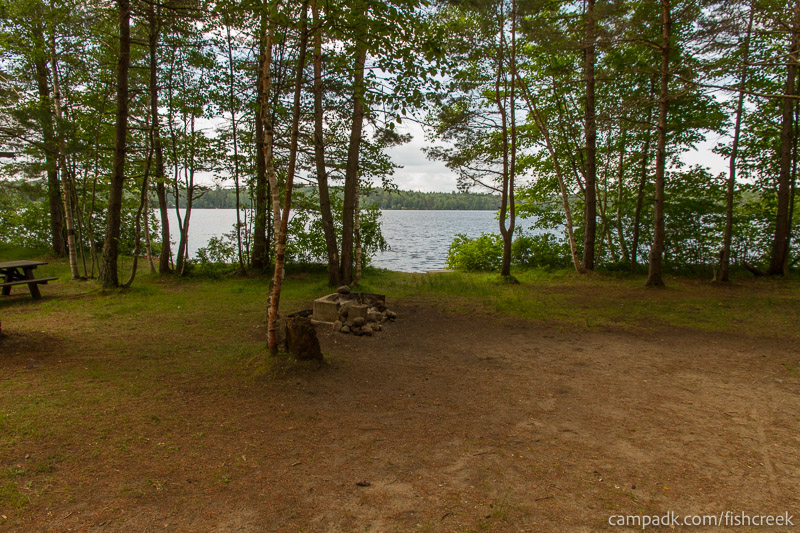 Campsite Photo of Site 98 at Fish Creek Pond Campground, New York - Looking at Site from Part Way In
