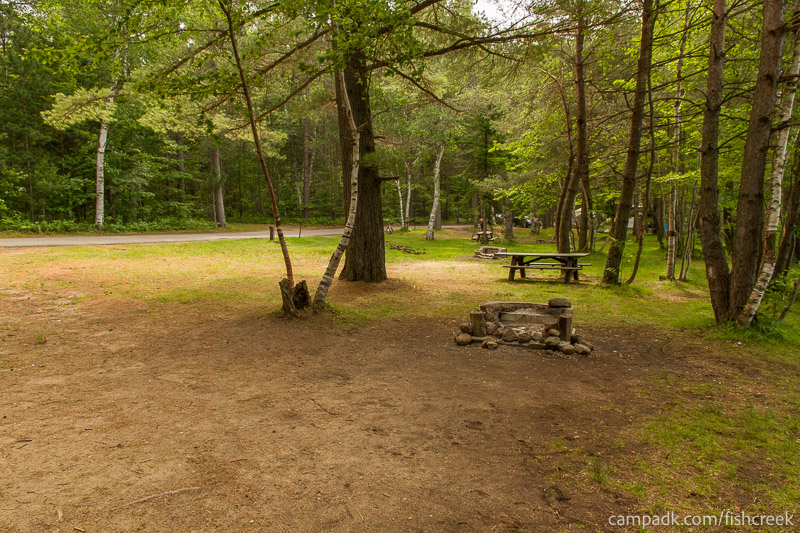 Campsite Photo of Site 98 at Fish Creek Pond Campground, New York - Cross Site View
