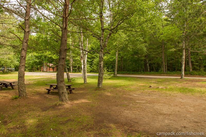 Campsite Photo of Site 98 at Fish Creek Pond Campground, New York - Looking Back Towards Road