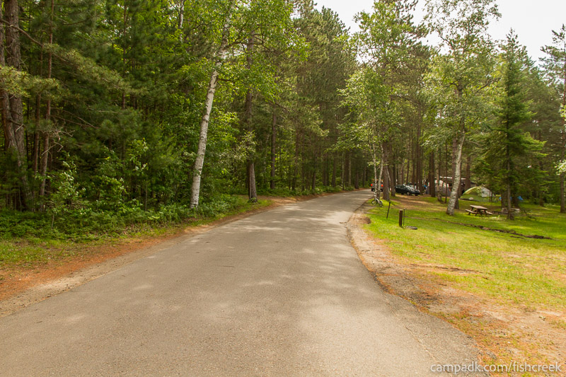 Campsite Photo of Site 98 at Fish Creek Pond Campground, New York - View Down Road from Campsite
