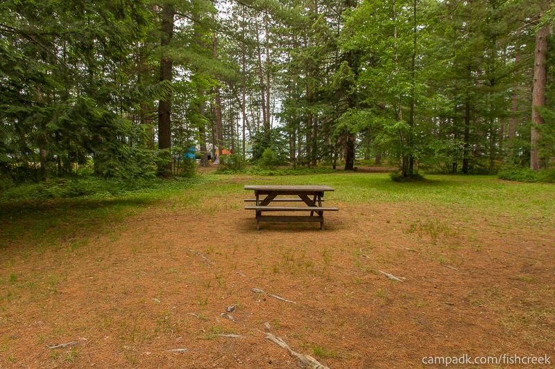 Campsite Photo of Site A9 at Fish Creek Pond Campground, New York - Cross Site View
