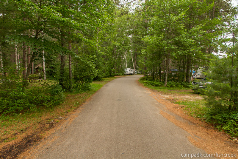 Campsite Photo of Site A9 at Fish Creek Pond Campground, New York - View Down Road from Campsite