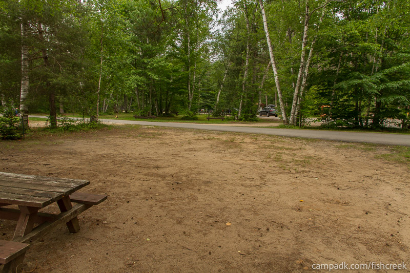 Campsite Photo of Site 51 at Fish Creek Pond Campground, New York - Looking Back Towards Road