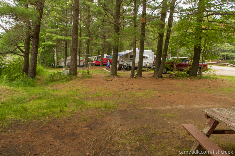 Campsite Photo of Site 31 at Fish Creek Pond Campground, New York - Cross Site View