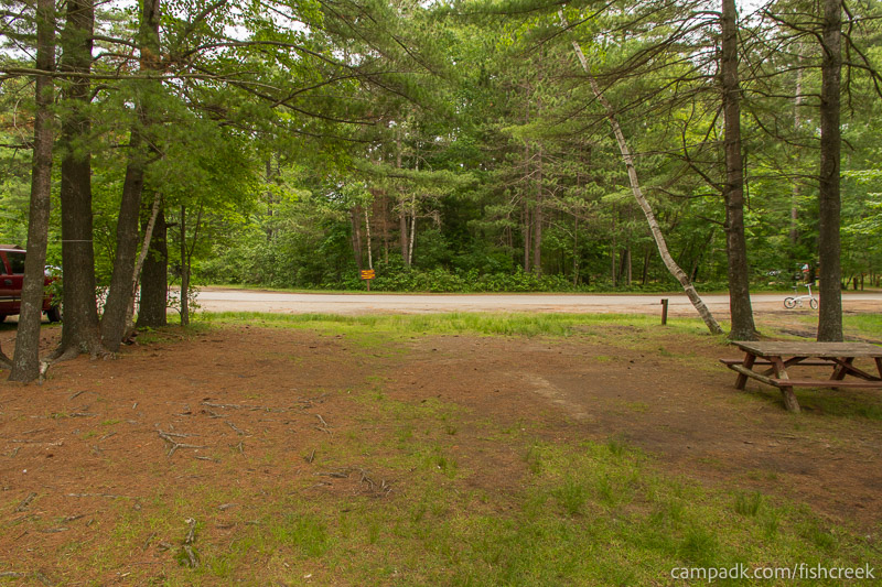 Campsite Photo of Site 31 at Fish Creek Pond Campground, New York - Looking Back Towards Road