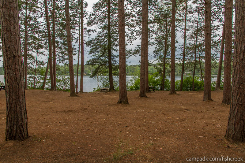Campsite Photo of Site 20 at Fish Creek Pond Campground, New York - Looking at Site from Road