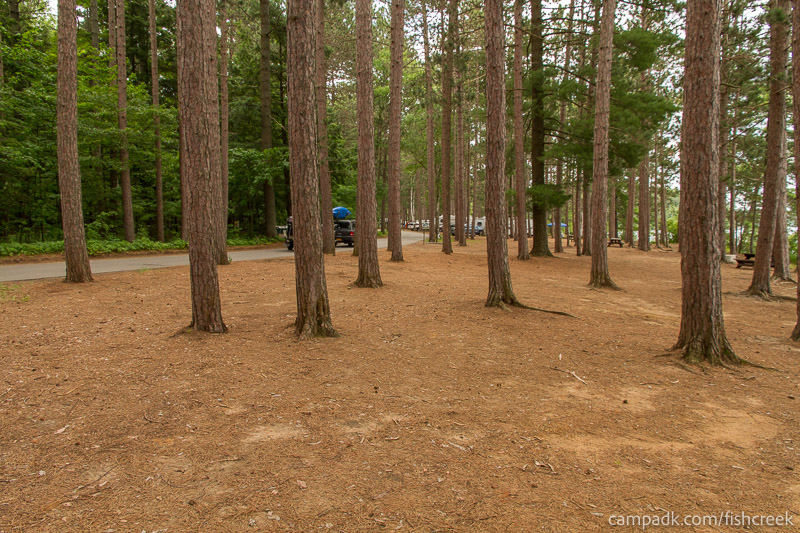 Campsite Photo of Site 20 at Fish Creek Pond Campground, New York - Cross Site View