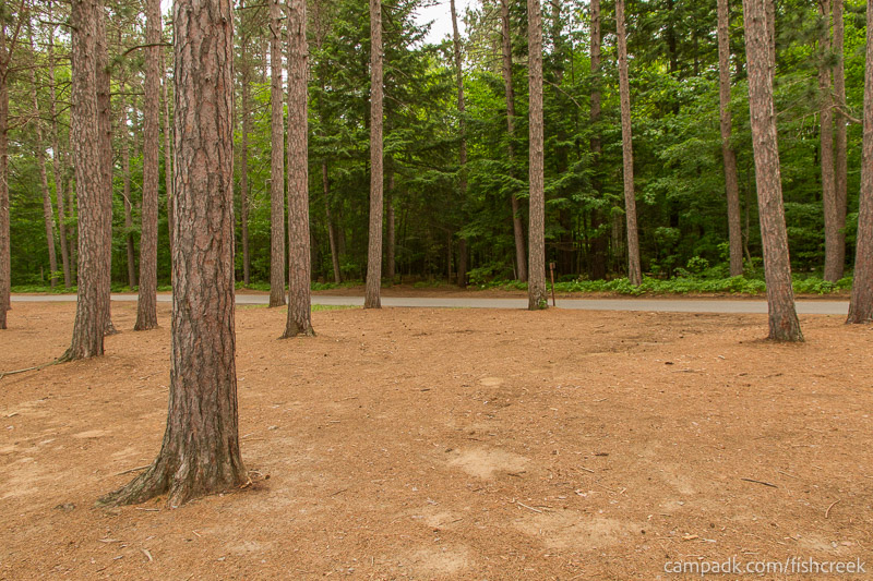Campsite Photo of Site 20 at Fish Creek Pond Campground, New York - Looking Back Towards Road