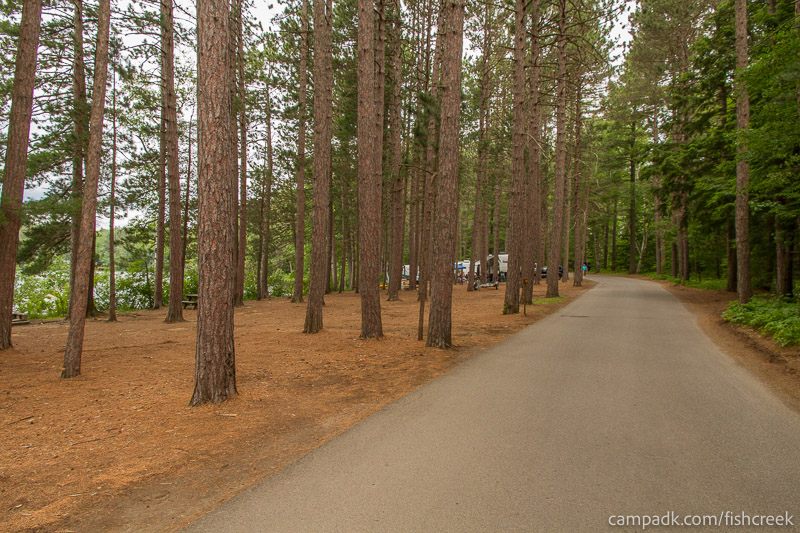Campsite Photo of Site 20 at Fish Creek Pond Campground, New York - View Down Road from Campsite