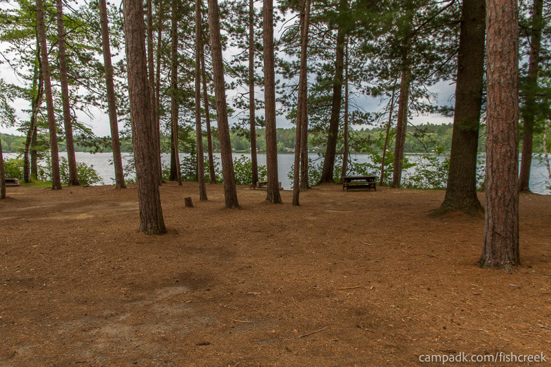 Campsite Photo of Site 19 at Fish Creek Pond Campground, New York - Looking at Site from Road