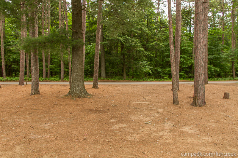 Campsite Photo of Site 19 at Fish Creek Pond Campground, New York - Looking Back Towards Road