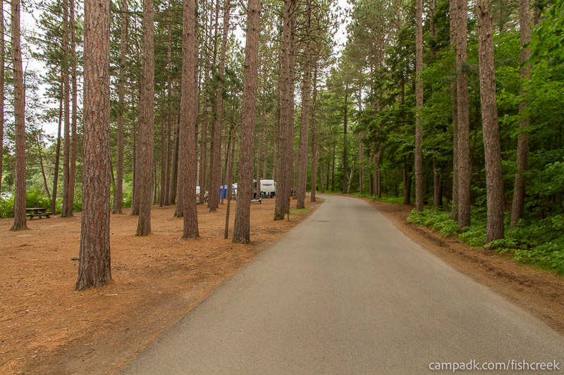 Campsite Photo of Site 19 at Fish Creek Pond Campground, New York - View Down Road from Campsite