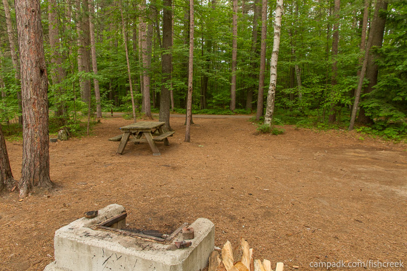 Campsite Photo of Site C9 at Fish Creek Pond Campground, New York - Looking Back Towards Road