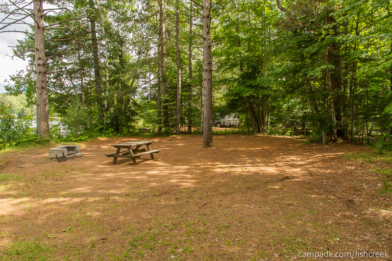 Campsite Photo of Site 147 at Fish Creek Pond Campground, New York - Cross Site View