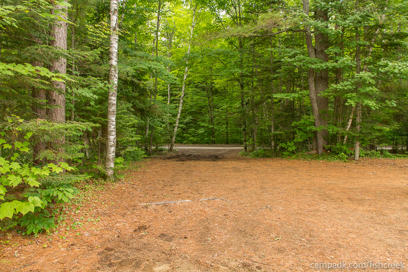 Campsite Photo of Site 147 at Fish Creek Pond Campground, New York - Looking Back Towards Road