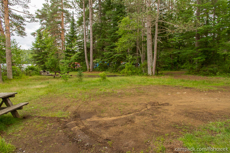 Campsite Photo of Site 282 at Fish Creek Pond Campground, New York - Cross Site View