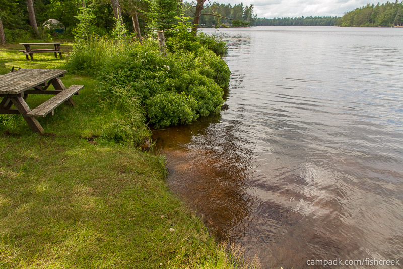 Campsite Photo of Site 282 at Fish Creek Pond Campground, New York - Shoreline