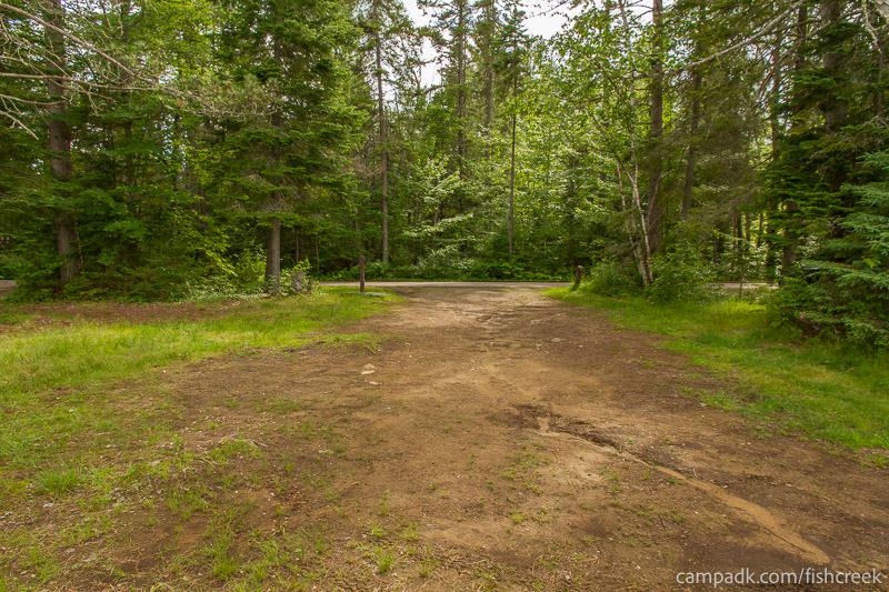 Campsite Photo of Site 282 at Fish Creek Pond Campground, New York - Looking Back Towards Road