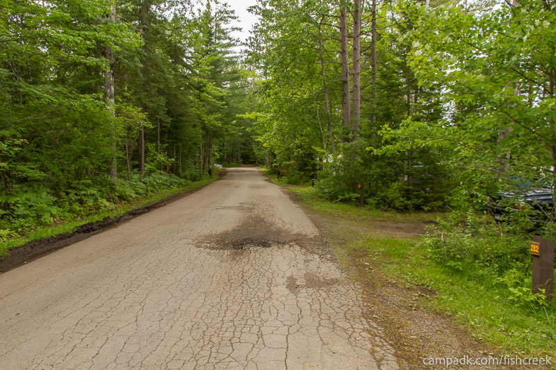 Campsite Photo of Site 282 at Fish Creek Pond Campground, New York - View Down Road from Campsite