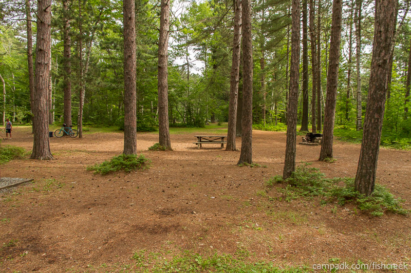 Campsite Photo of Site A20 at Fish Creek Pond Campground, New York - Looking at Site from Road