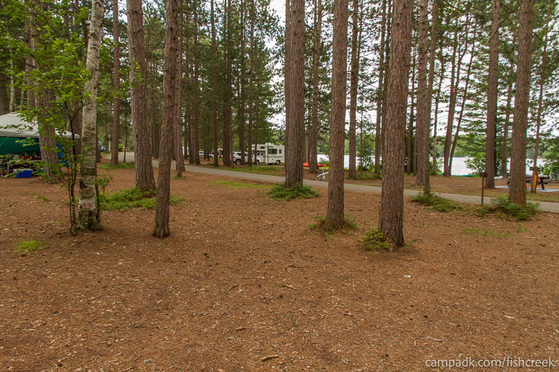 Campsite Photo of Site A20 at Fish Creek Pond Campground, New York - Looking Back Towards Road