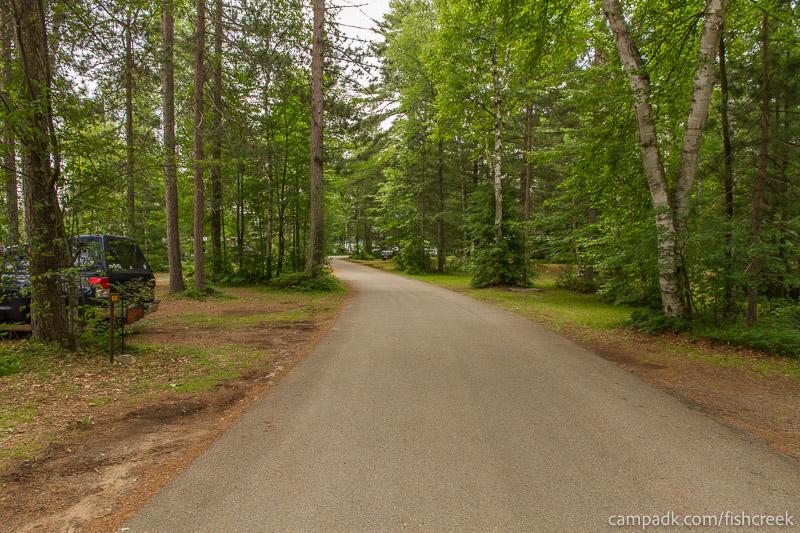 Campsite Photo of Site 59 at Fish Creek Pond Campground, New York - View Down Road from Campsite