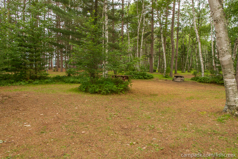 Campsite Photo of Site A7 at Fish Creek Pond Campground, New York - Cross Site View