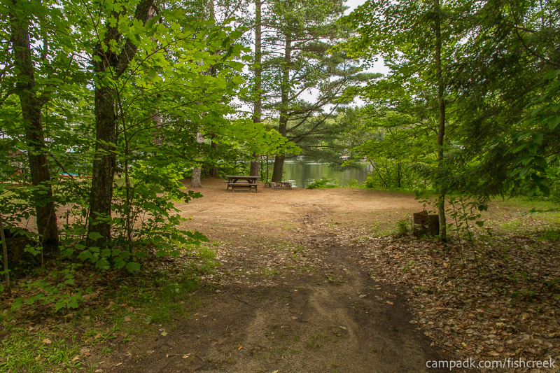 Campsite Photo of Site 159 at Fish Creek Pond Campground, New York - Looking at Site from Road