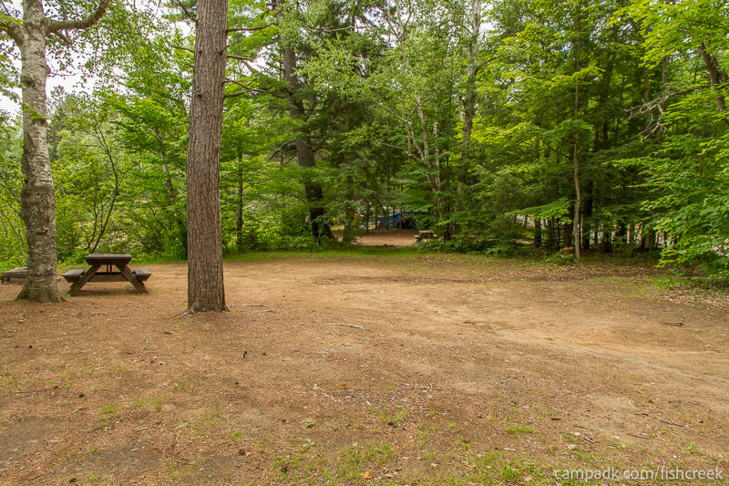 Campsite Photo of Site 159 at Fish Creek Pond Campground, New York - Cross Site View