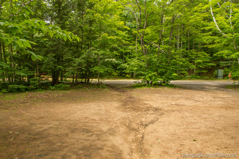Campsite Photo of Site 159 at Fish Creek Pond Campground, New York - Looking Back Towards Road