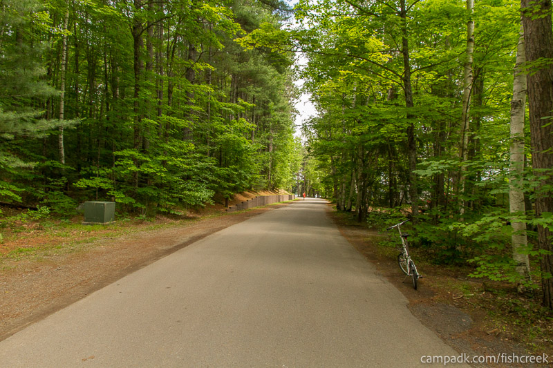Campsite Photo of Site 159 at Fish Creek Pond Campground, New York - View Down Road from Campsite