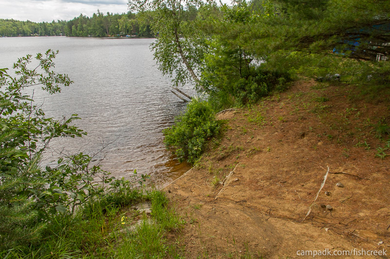Campsite Photo of Site 118 at Fish Creek Pond Campground, New York - Shoreline