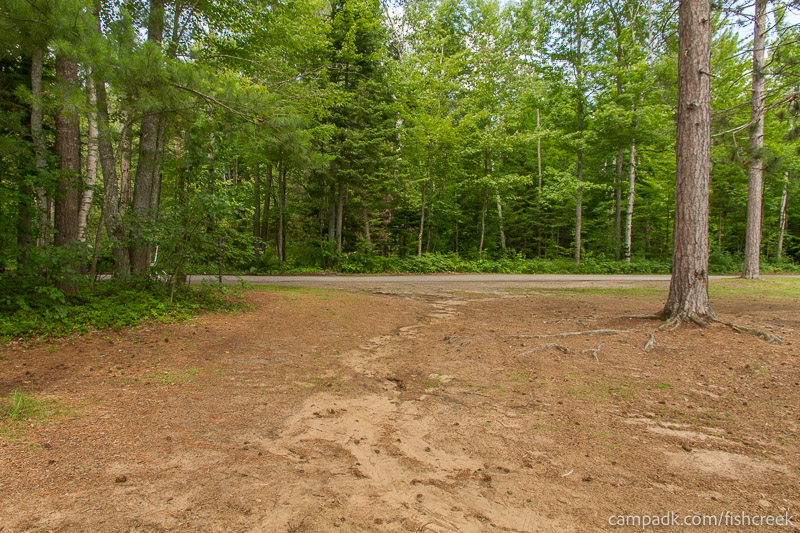 Campsite Photo of Site 41 at Fish Creek Pond Campground, New York - Looking Back Towards Road