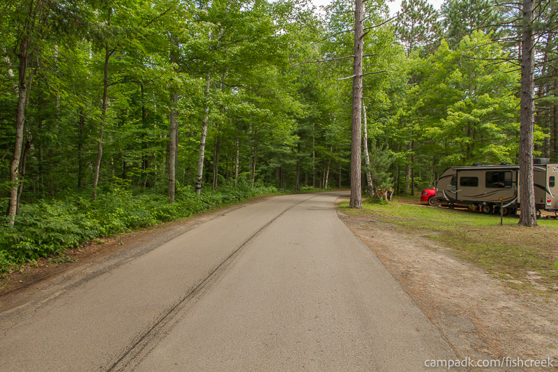 Campsite Photo of Site 41 at Fish Creek Pond Campground, New York - View Down Road from Campsite