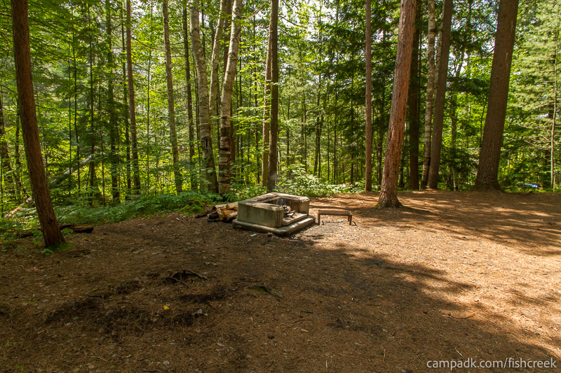 Campsite Photo of Site C12 at Fish Creek Pond Campground, New York - Cross Site View